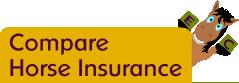 Compare Horse Insurance