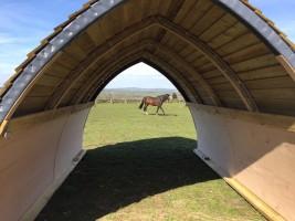 Large Horse Arc in Durham