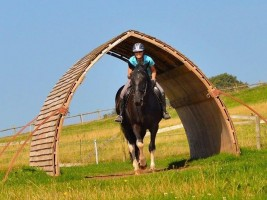 A ride-through field shelter
