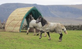 A more natural field shelter