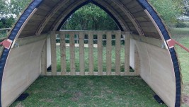 Shelter shared by horses in two paddocks