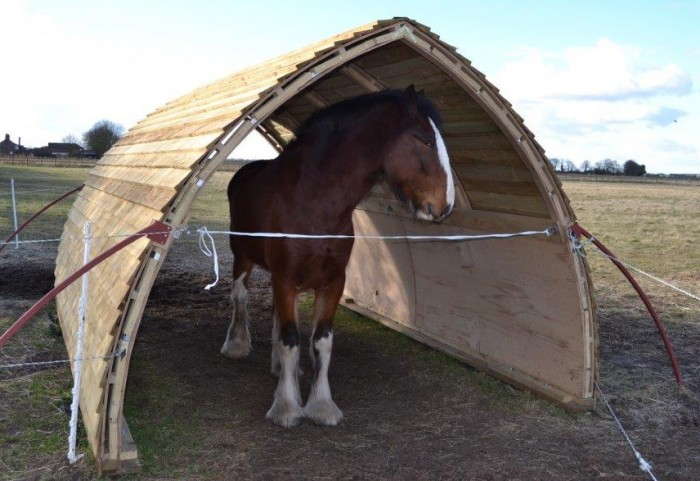 A field shelter for large horses