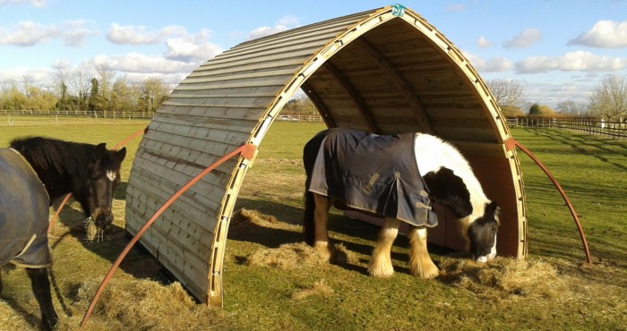 Horses eating in their field shelter