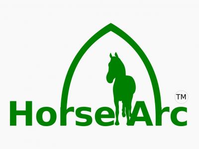 Horse Arc - a webVR case study