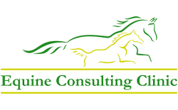 Equine Consulting Clinic